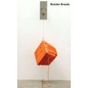 (9781605855721) Bozidar Brazda, Matthew Higgs, Shamim Momin Books