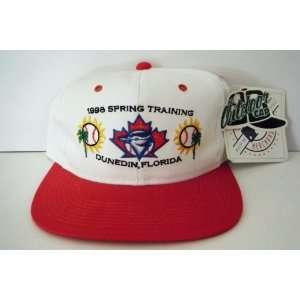 Toronto Blue Jays NEW Vintage Snapback Hat Sports