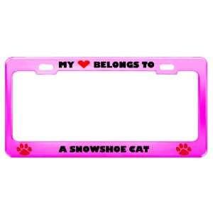 A Snowshoe Cat Pet Pink Metal License Plate Frame Tag