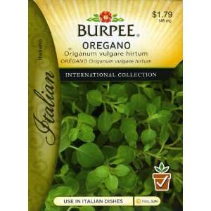 Burpee 69613 Italian   Herb Oregano Seed Packet Patio