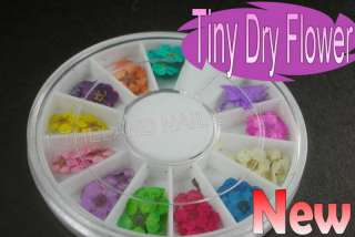 60Pcs Dried Dry Flower Nail Art Decorations UV Acrylic