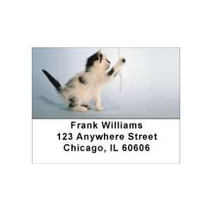 Sew Playful Kittens Address Labels Office Products