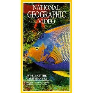 com National Geographic Video Africas Animal Oasis [VHS] National