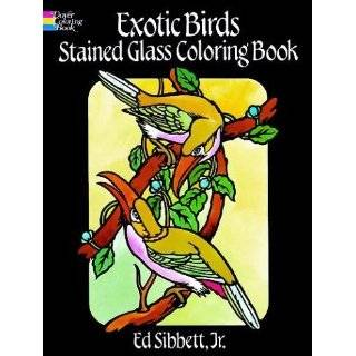 Rain Forest Wildlife Stained Glass Coloring Book (Dover Nature Stained