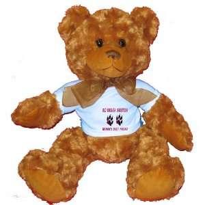 OLD ENGLISH SHEEPDOG WOMANS BEST FRIEND Plush Teddy Bear