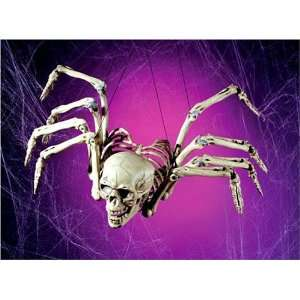 13 Human Skeleton Bone Spider Halloween Prop: Home