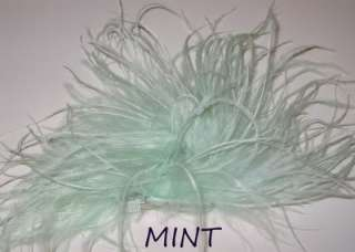 OSTRICH FEATHER PUFF BOUTIQUE BABY GIRL HAIR ALLIGATOR CLIP