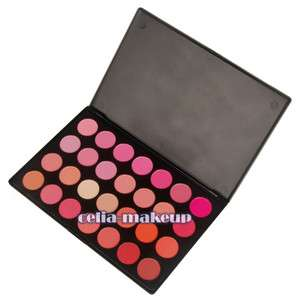 28 Piece Professional Blush Palette [PC06]