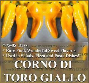 BULLS HORN COW HORN Pepper seeds TORO GIALLO pasta dishes GRILLED ETC