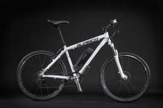 BURISCH Synergy GT250 Ebike e bike pedelec electric bicycle