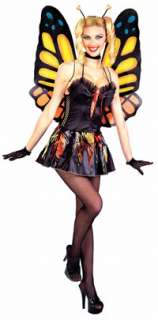 Adult Sexy Butterfly Costume   Sexy Adult Costumes