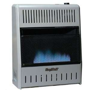 30000 BTU Blue Flame Dual Fuel Gas Heater