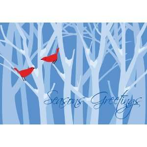Christmas Birds in Snow   Boxed Holiday Christmas Greeting Cards   Set