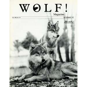Wolf Magazine Endanged Species Recovery Programs  Yellowstone  Idaho