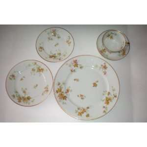 Haviland Fine China Autumn Leaf w/ Gold Trim 5 Place Setting [dinner