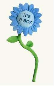 RUSS BERRIE ITS A BOY FLOWER BABY NEWBORN GIFT NEW |